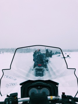 The view from our snowmobiles (this was taken while we were stopped, don't worry!)