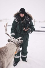 Turns out reindeer really like lichen—and really liked when we fed it to them!